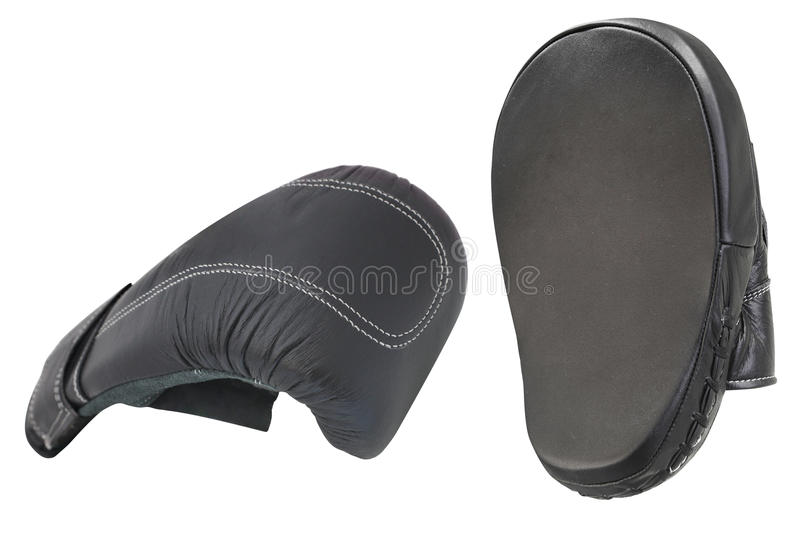 Boxing gloves. Under the white background stock image