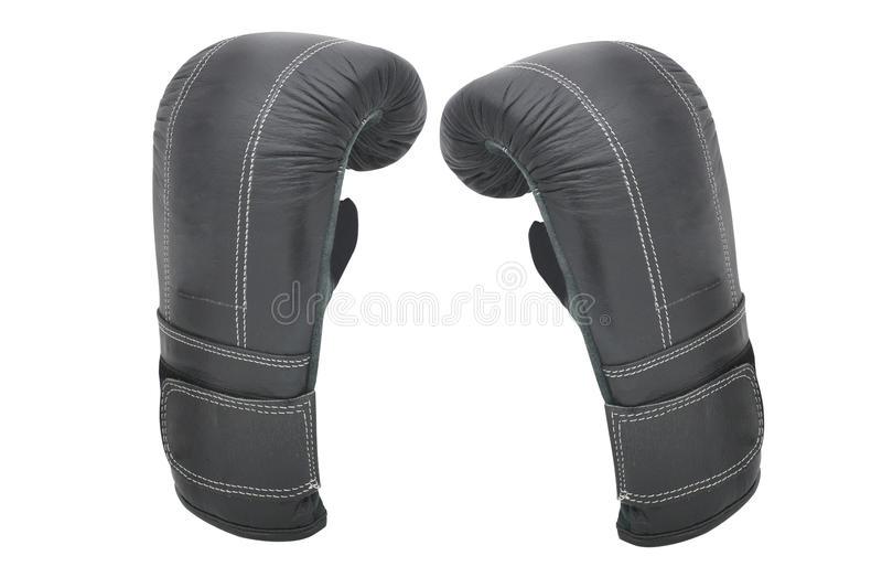 Boxing gloves. Under the white background stock photography