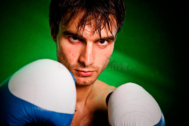Boxing. Man in boxing gloves royalty free stock photo