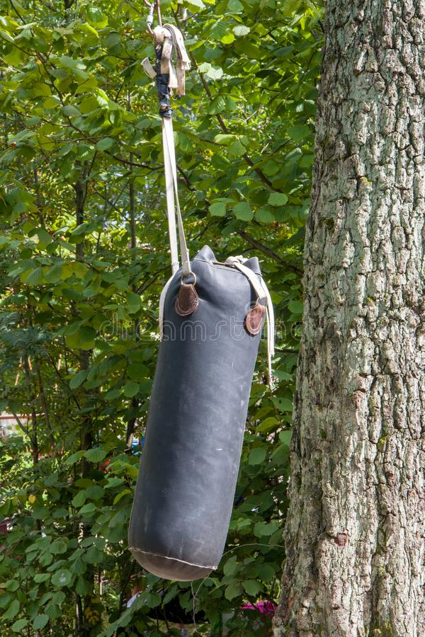 Boxing punching bag hanging in the forest, sport and leisure, lifestyle. Boxing and practicing blow. Entertainment for vacationers.  stock photography