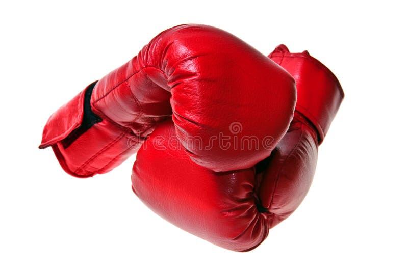 boxninghandskar royaltyfri foto