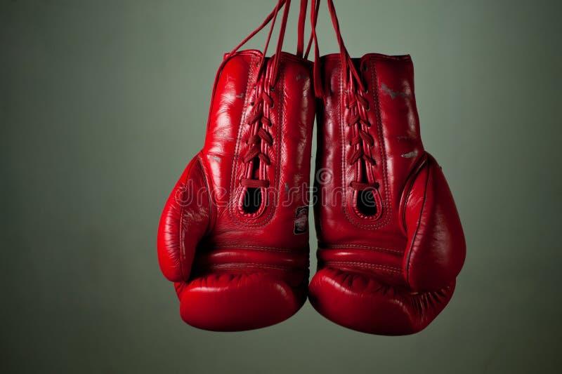 Boxninghandskar som hänger från, snör åt arkivfoton