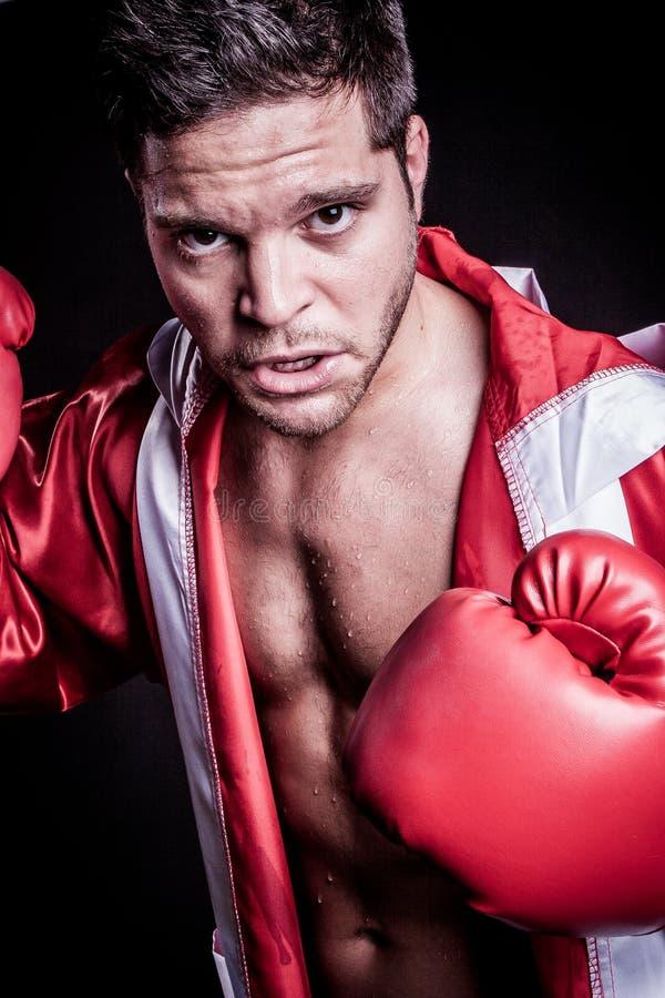 Boxningkämpeman fotografering för bildbyråer