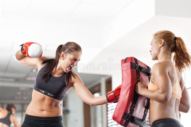Boxningkvinnor royaltyfria bilder