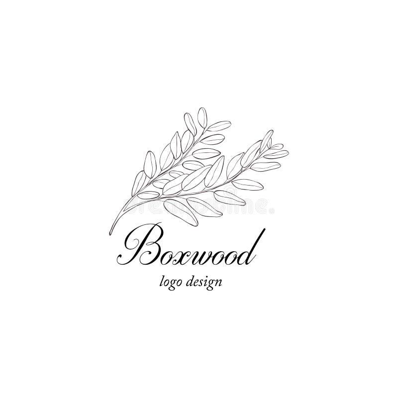 Boxwood rośliny gałąź Greenery projektuje element ilustracji