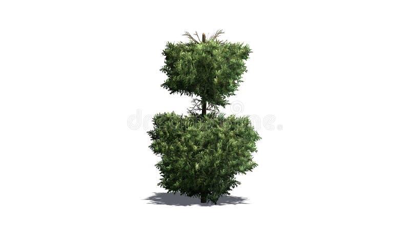 Boxwood Topiary z cieniem na podłodze ilustracja wektor