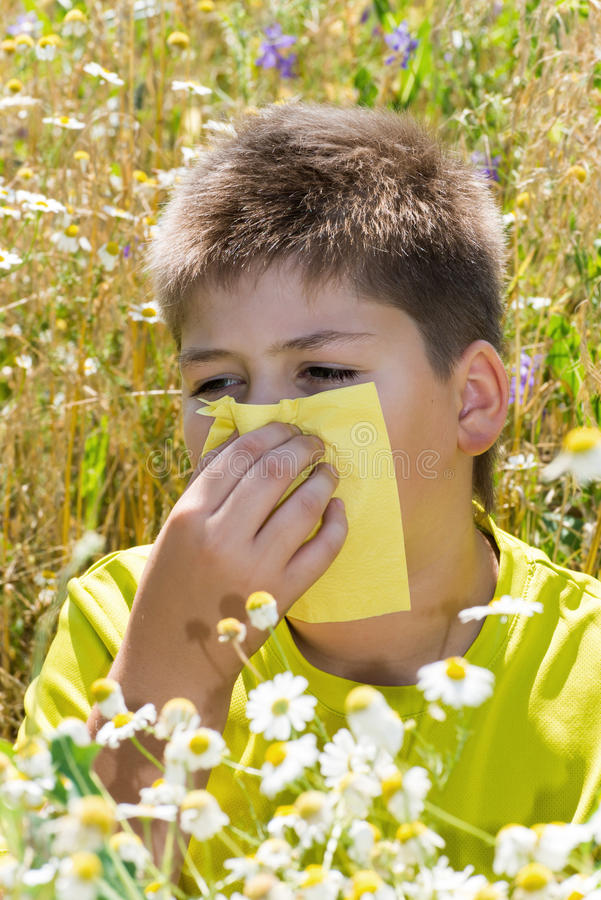 Boy with allergic rhinitis in meadow. Boy with allergic rhinitis in the meadow stock photo