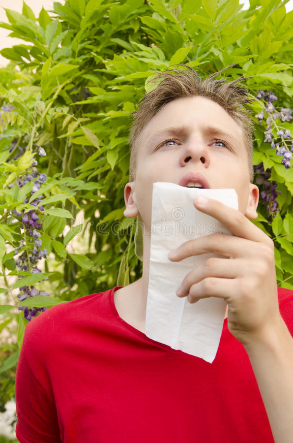 Boy with allergies-vertical image royalty free stock images