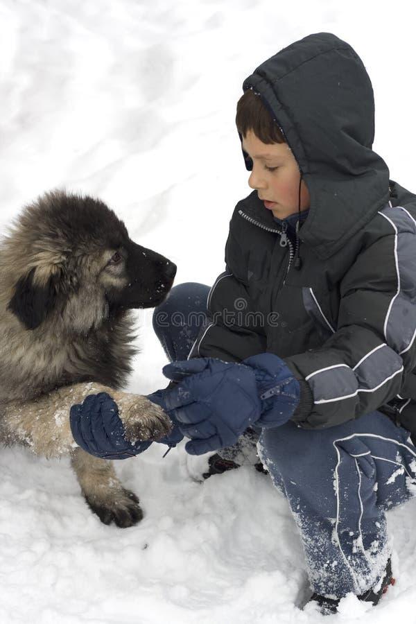 Free Boy And Dog Stock Photos - 7740843