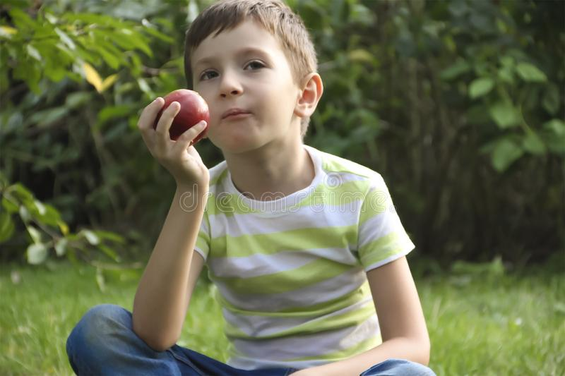 Boy with an apple, sits on the grass. Boy with an apple sits on the grass royalty free stock image