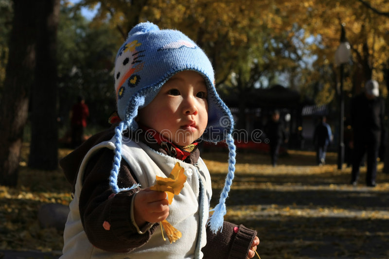 Boy in autumn stock photos