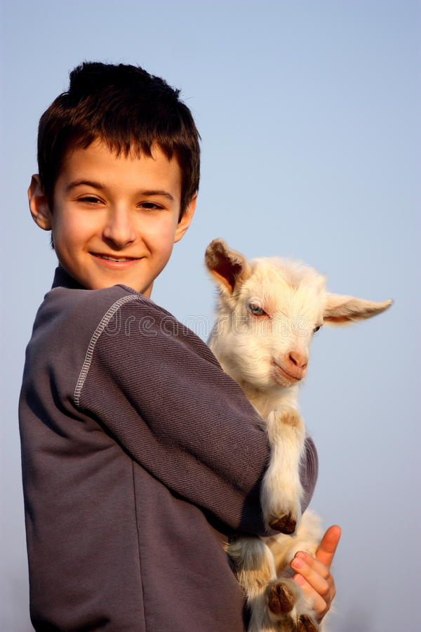 A boy with baby goat stock photography