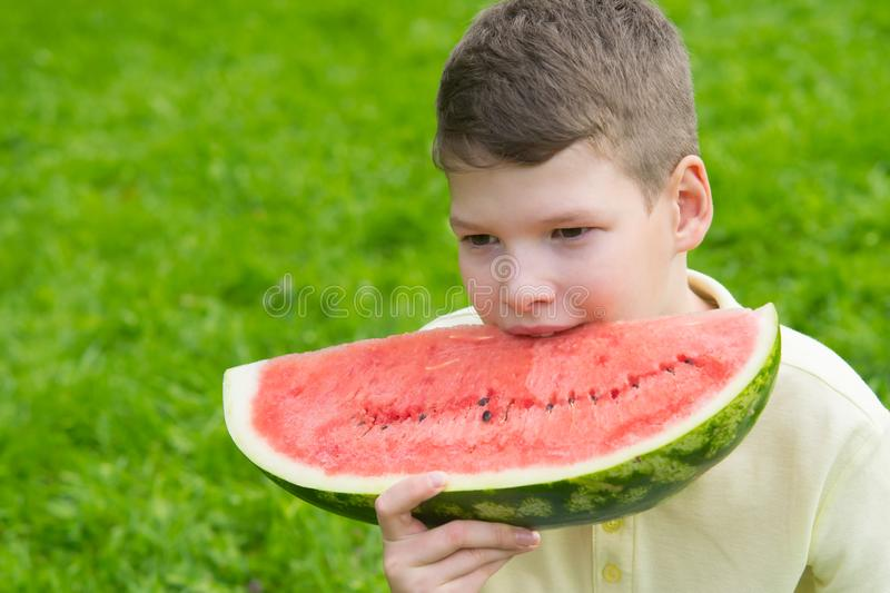 Boy on the background of the lawn bites a large slice of watermelon 1 time stock images