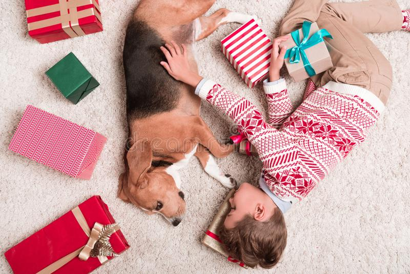 Boy with beagle dog and christmas gifts royalty free stock image