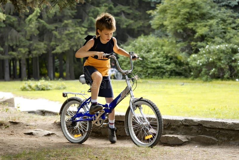 Boy on bicycle royalty free stock image