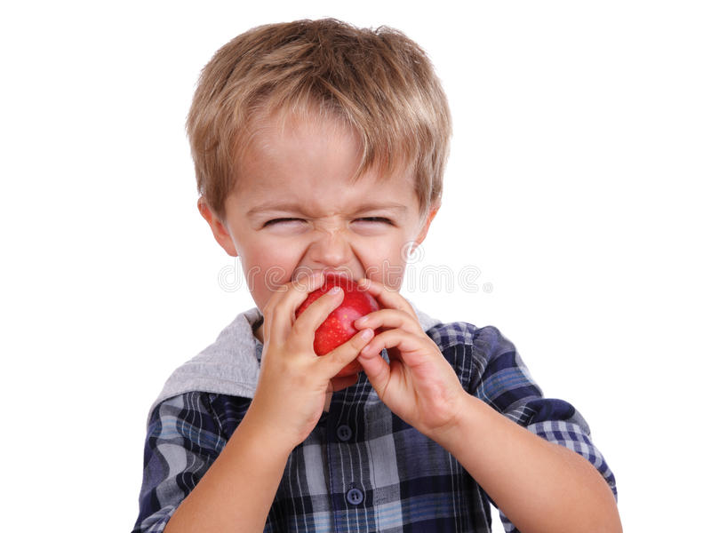 Download Boy biting a red apple stock photo. Image of education - 27553248