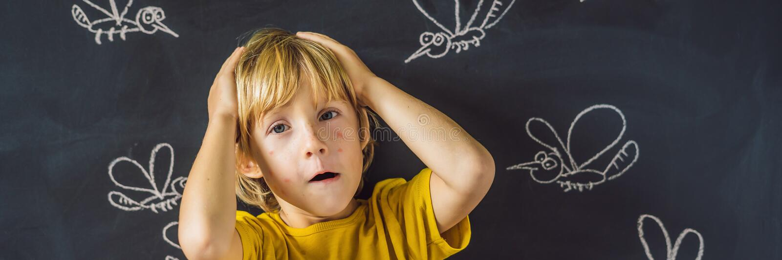 The boy is bitten by mosquitoes on a dark background. On the blackboard with chalk painted mosquitoes BANNER, LONG. The boy is bitten by mosquitoes on a dark stock image