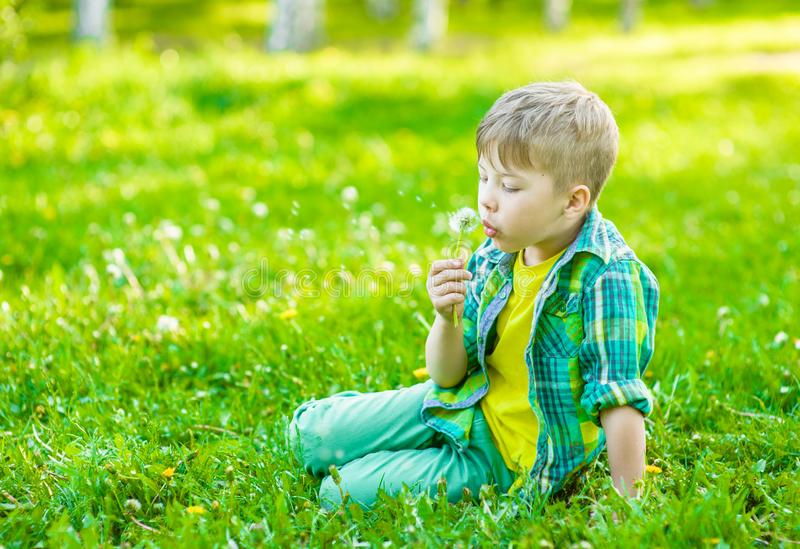 Boy blowing dandelion on green grass stock images