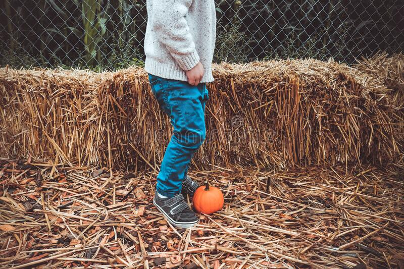 Boy in blue jeans kicking pumpkin royalty free stock photography