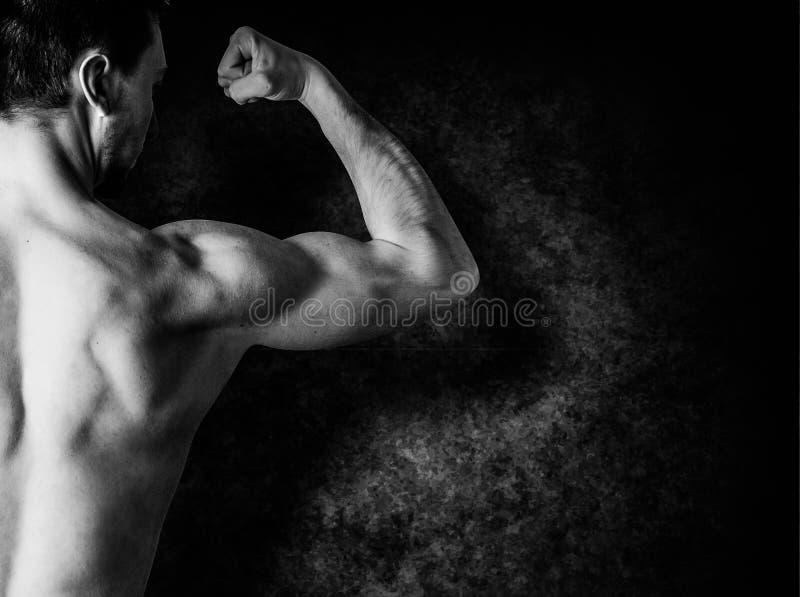 Boy bodybuilder, posing stock images