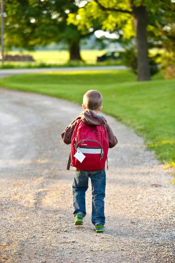 Boy in Brown Hoodie Carrying Red Backpack While Walking on Dirt Road Near Tall Trees royalty free stock photo