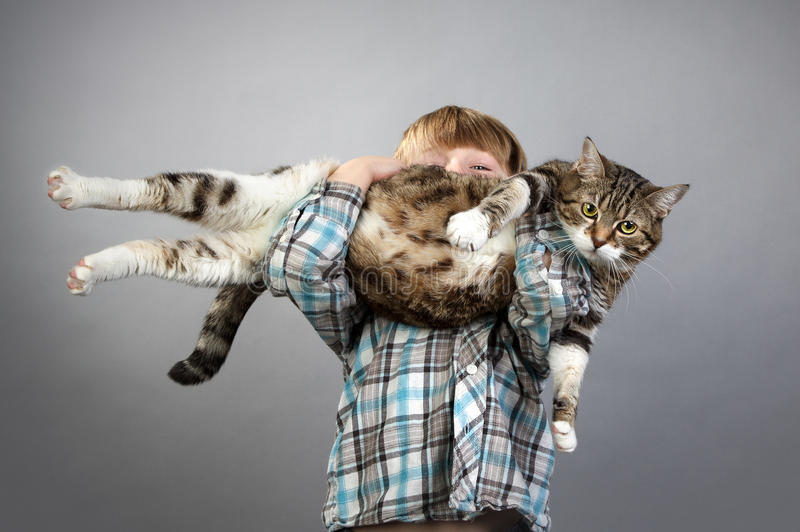 Boy and Cat stock images