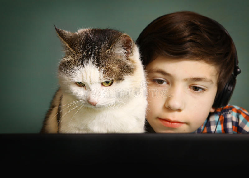 Boy and cat watch movie on computer. Boy and cat watch movie on laptop computer stock image