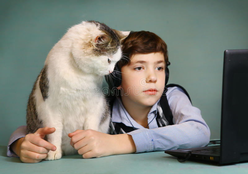 Boy and cat watch movie computer. Boy and cat watch movie on notebook computer stock photography
