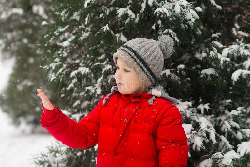 The boy catches snow on the palm. Outdoor. Winter. Snow stock image