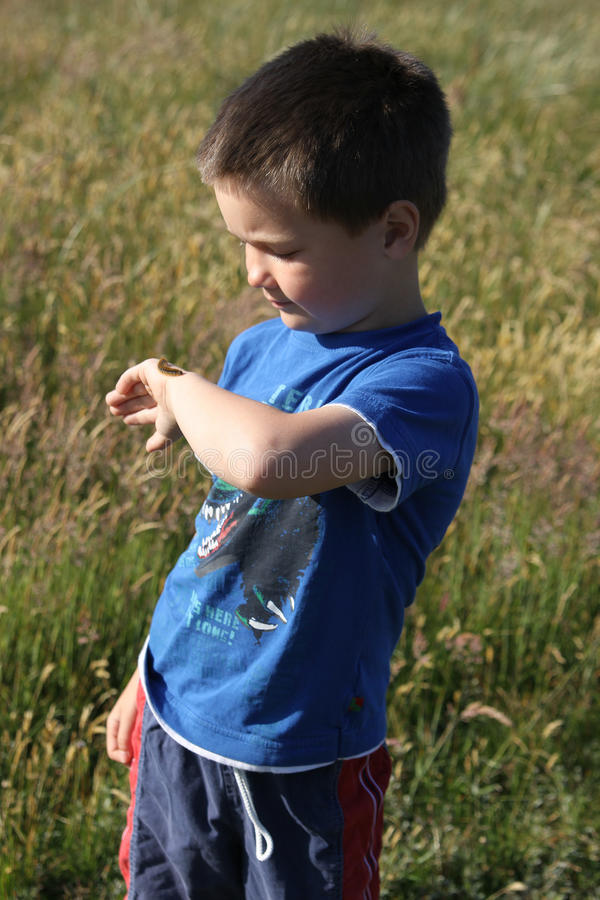 Boy with caterpillar on his arm stock images
