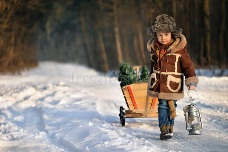 Boy with a Christmas tree in the winter forest. Winter portrait in a boy outdoors in a brown sheepskin coat and fur hat, in a snowy scenery. Beautiful, cold stock image