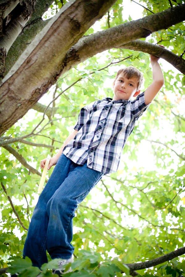 Download Boy Climbing Tree Royalty Free Stock Photos - Image: 27174978