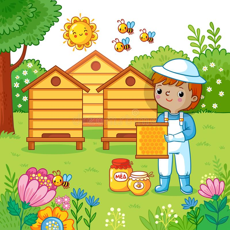 Boy collects honey. royalty free illustration