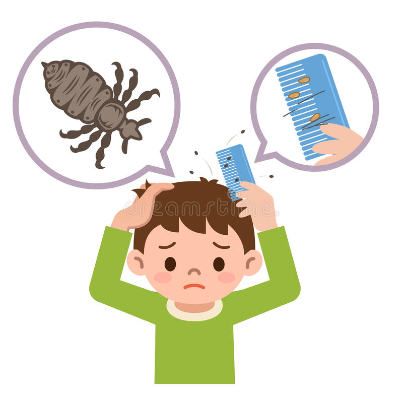 Boy comb the hair with a comb for lice stock illustration