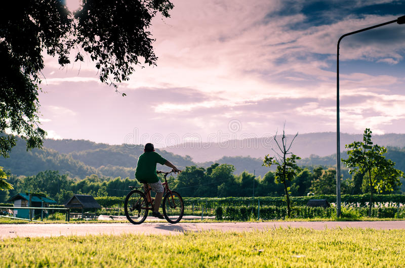 The boy is cycling royalty free stock photography