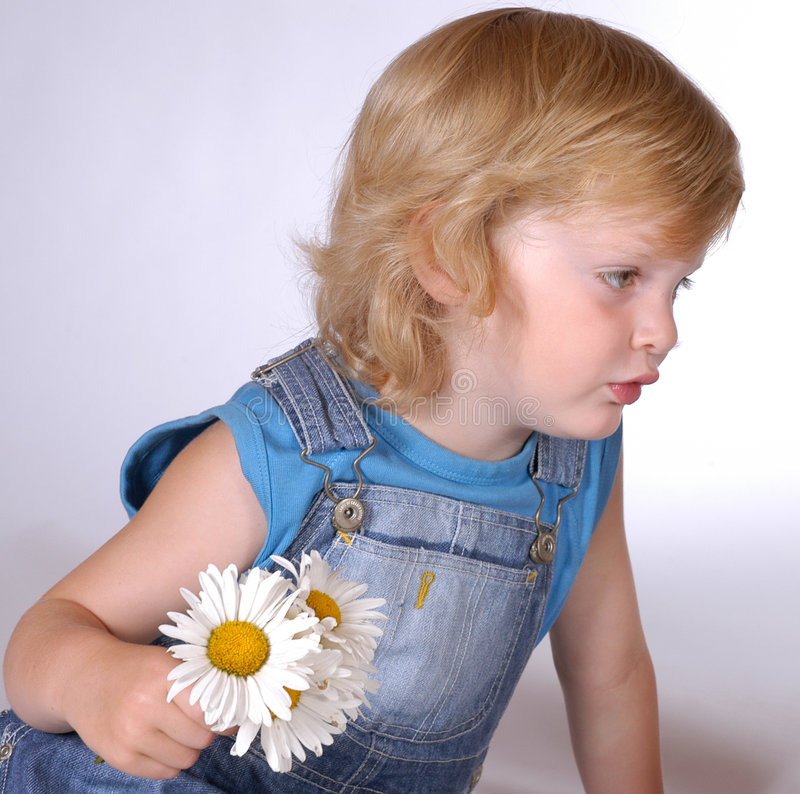 Boy with daisies stock photography