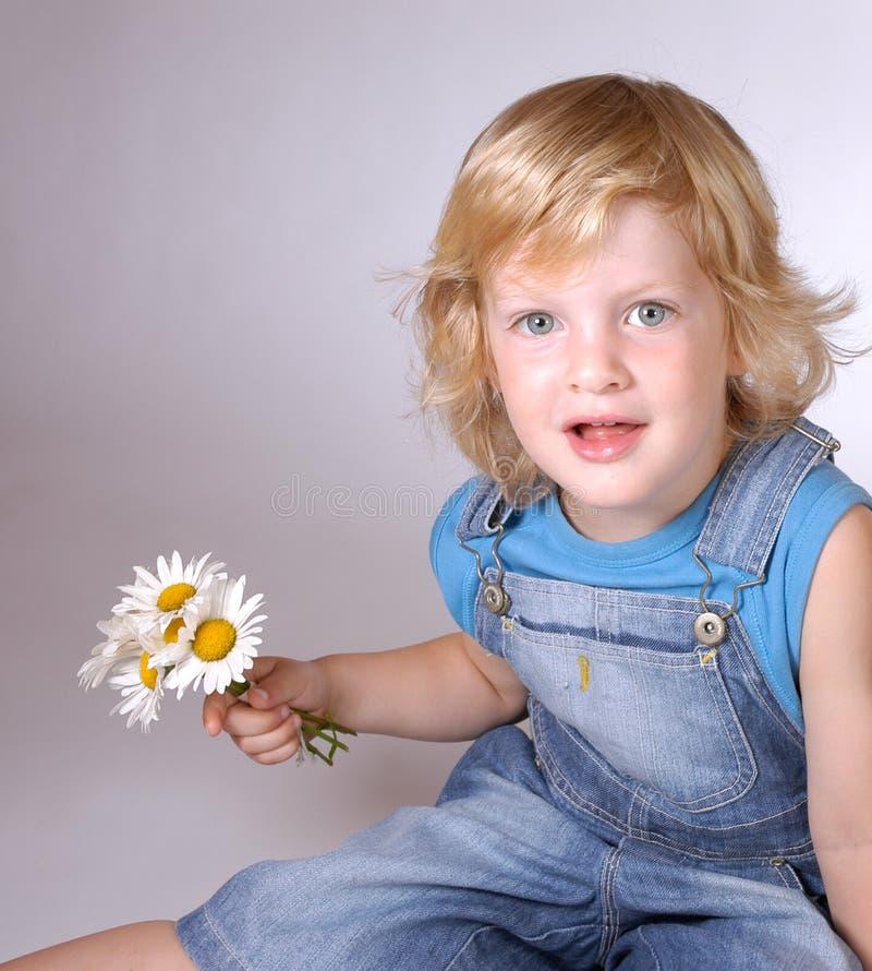 Boy with daisies stock photos