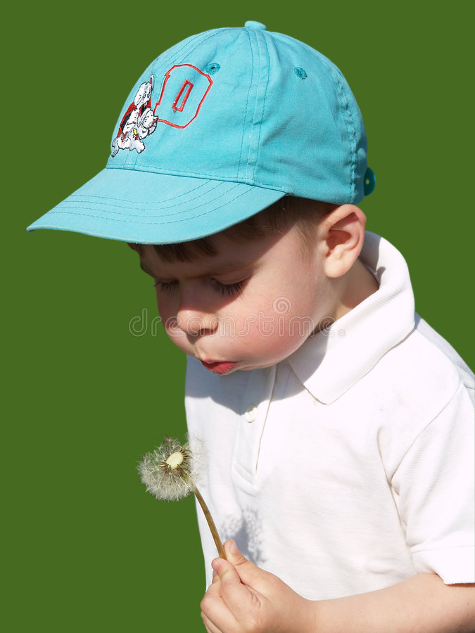 Download Boy and dandelion stock image. Image of young, season - 1642577