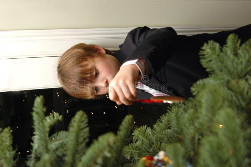 Download Boy Decorating Christmas Tree Royalty Free Stock Image - Image: 1659866