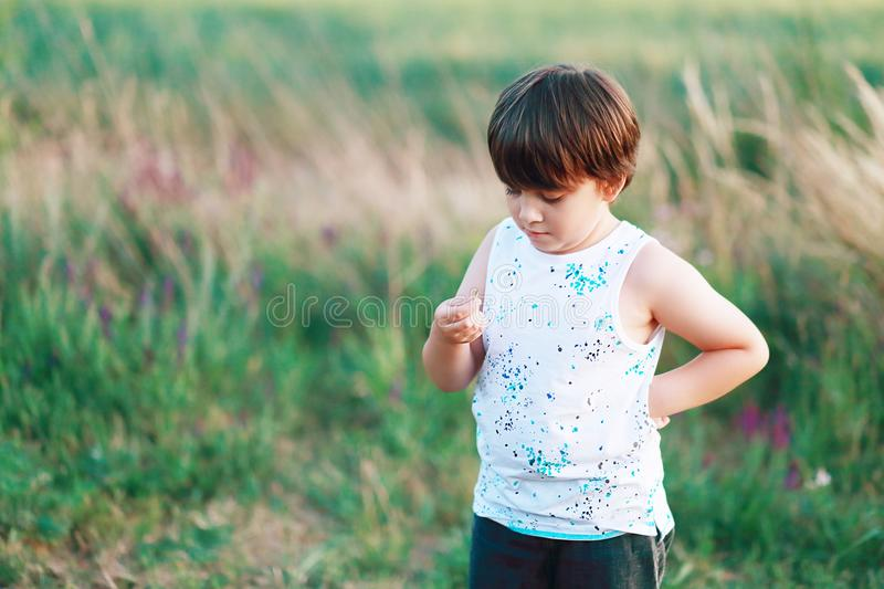 Boy discovered a bug. Little 6 years boy discovered a bug which he found on field royalty free stock image