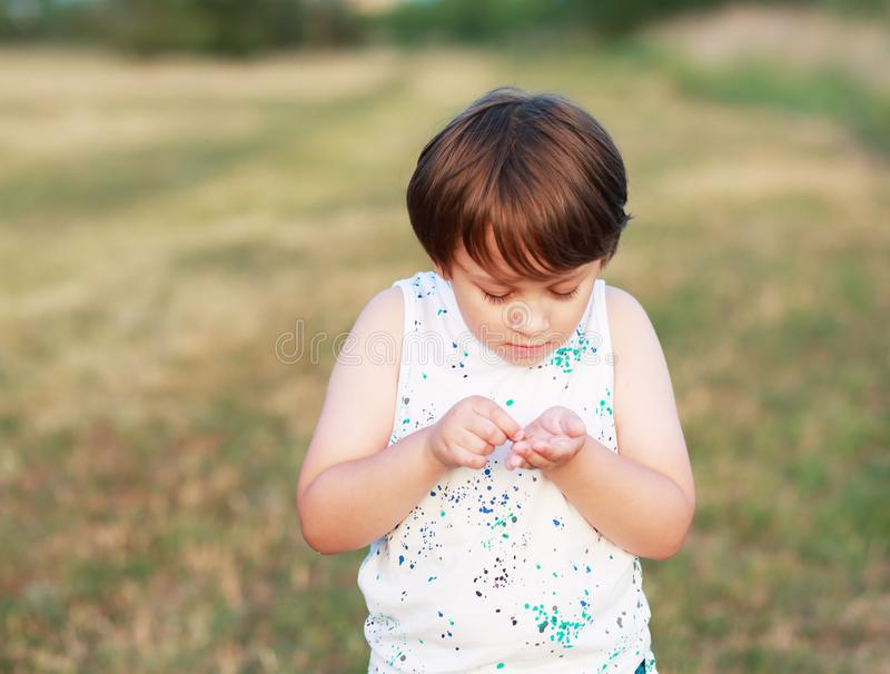 Boy discovered a bug. Little 6 years boy discovered a bug which he found on field royalty free stock photo