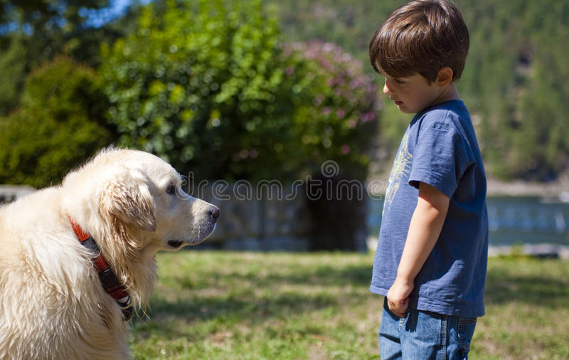 Boy and dog. Boy looking at dog at day time royalty free stock images