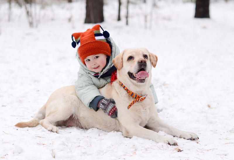 A boy with the dog royalty free stock photography