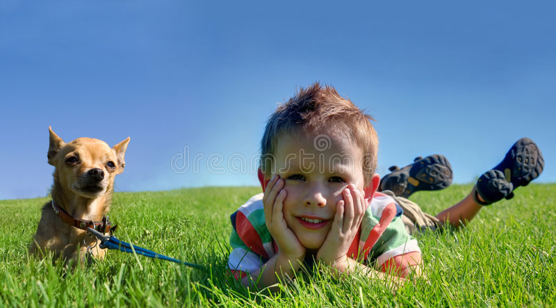Download Boy and dog stock photo. Image of leash, puppy, green - 6087882