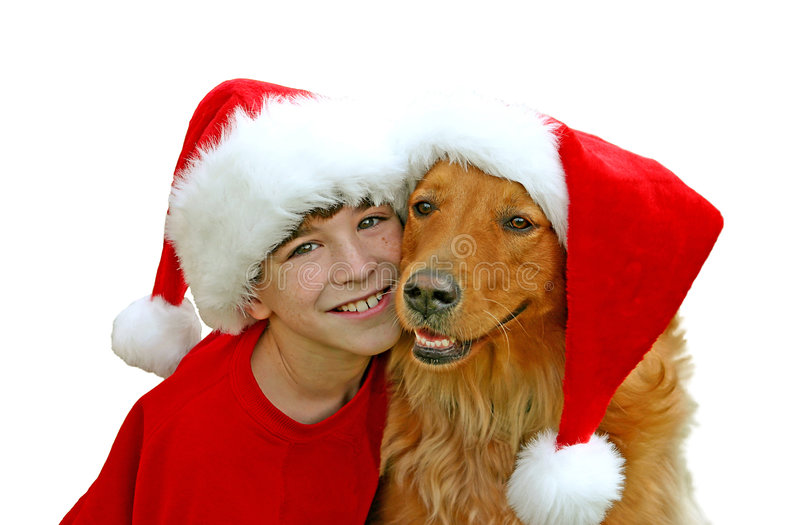 Download Boy And Dog In Christmas Hats Stock Photo - Image: 2834014