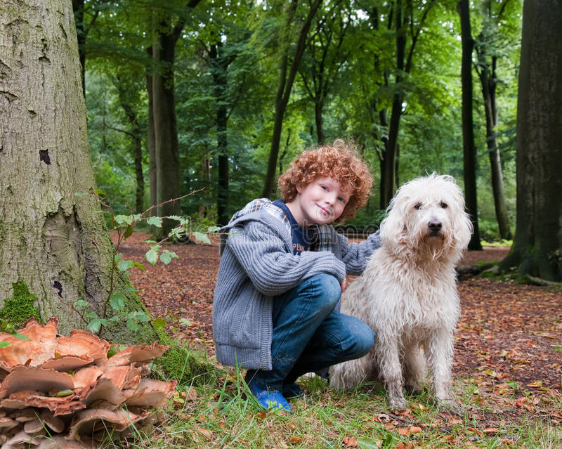 Download Boy and dog stock image. Image of bond, redhead, forest - 33742725