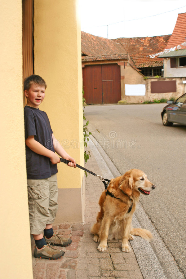 Boy and dog teamwork royalty free stock images