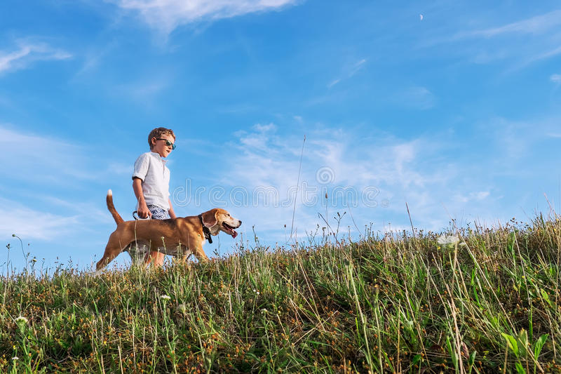 Boy with dog walk together on green hill royalty free stock images