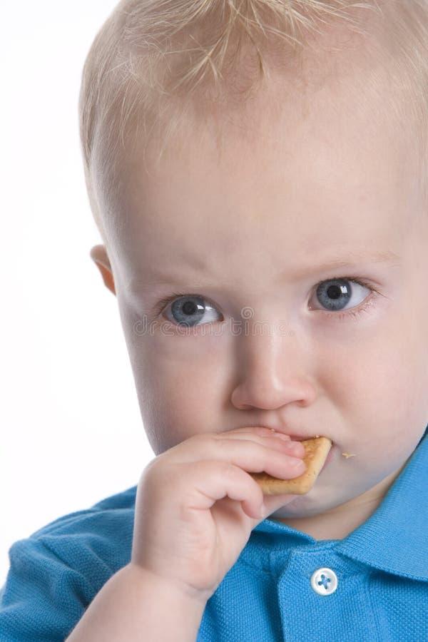 Boy Is Eating Coockie Stock Image