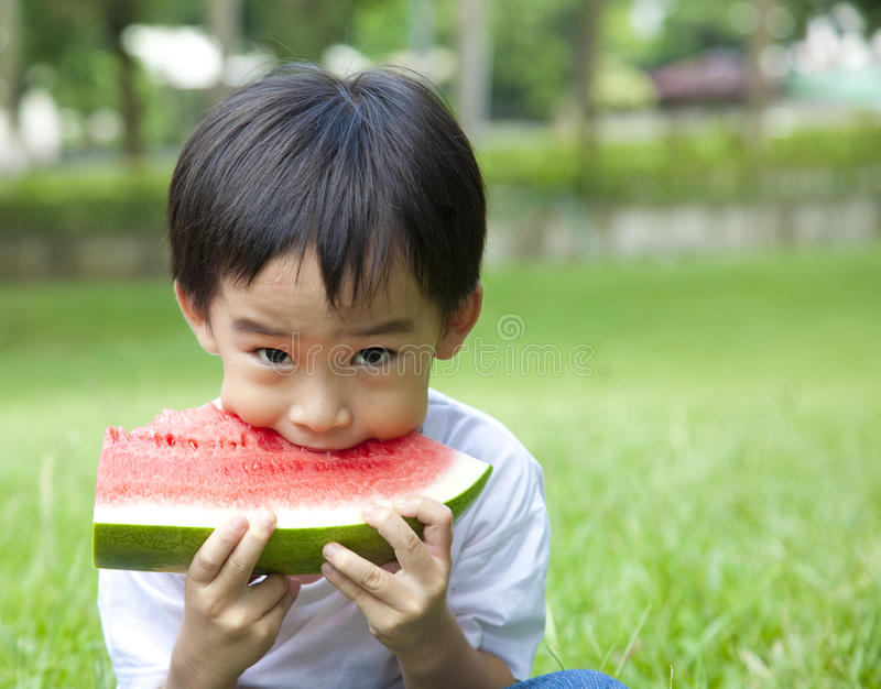 Boy eating watermelon. Asian boy eating watermelon on the grass field royalty free stock images